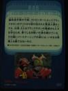 20080729_004